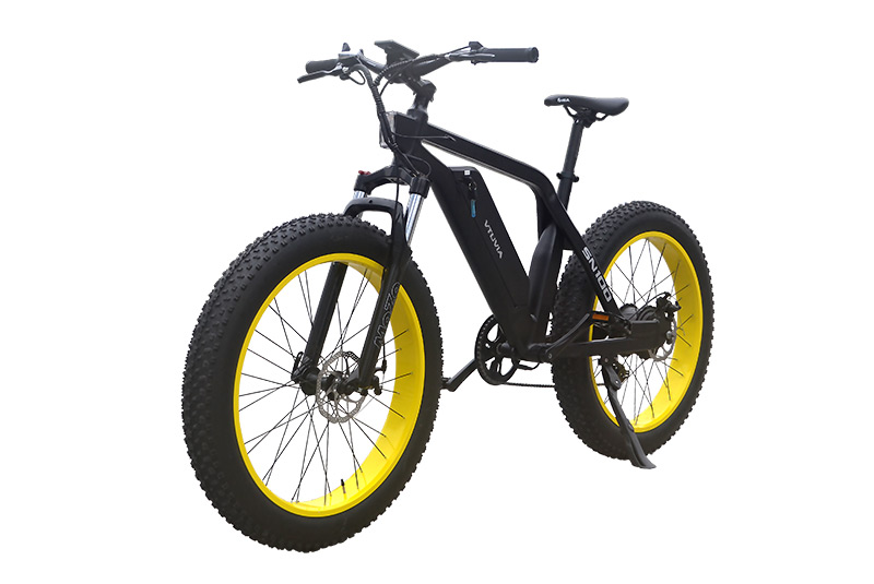 New arrival electric motorized bike 48V 750W Fat electric bike