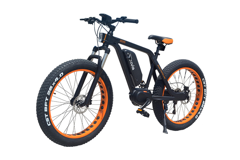 26 Inch 48V 350W Mid drive Fat Tire Electric Mountain Bicycle (V-SM26)