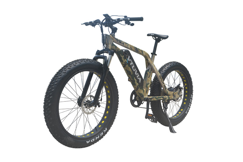 2019 U.S. hot selling Fat tire camouflage mountain electric bike